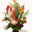 Floral Designs and Arrangements