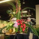 Phil designing the large center arrangement for the Hawaii Department of Agriculture's booth at PMA.